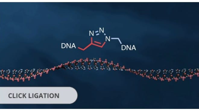 ATDBio Oligonucleotides Click Ligation