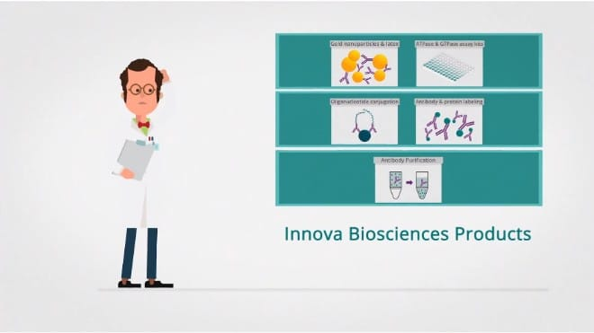 Innova Biosciences Custom Services Micro-optimization Conjugation services Assay development Batch validation and reservation Custom pack sizes
